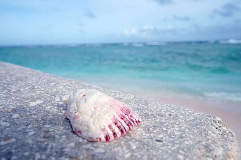グアムで一番美しいビーチ「リティディアンビーチ」